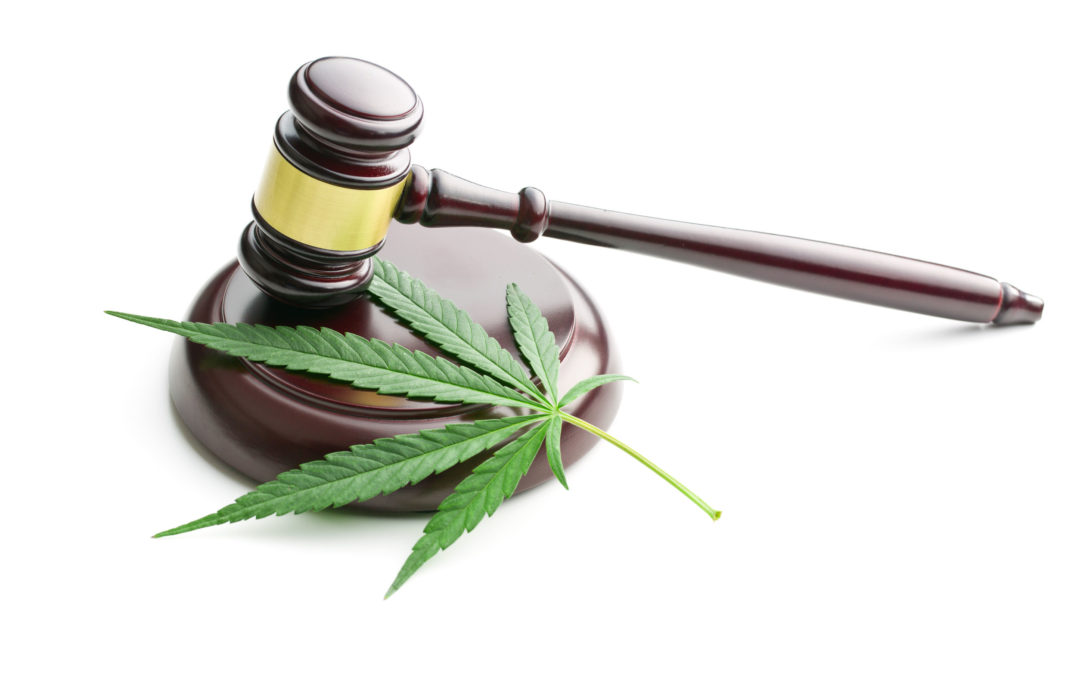 Constitutional Court groundbreaking judgment: legalising cannabis in South Africa
