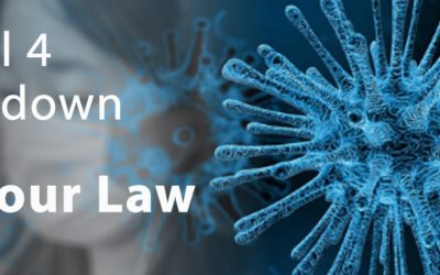 Employer and employee rights and responsibilities during lockdown level 4