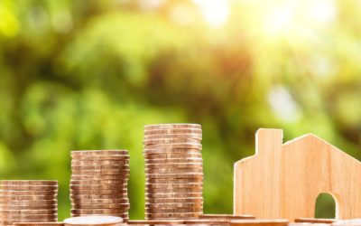 What are the costs involved in buying and selling immovable property?